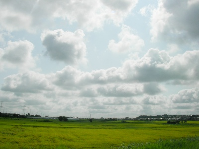 2011-08-28№(001).JPG